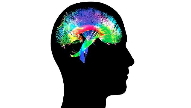Zarys głowy z symbolicznym przedstawieniem neuronów