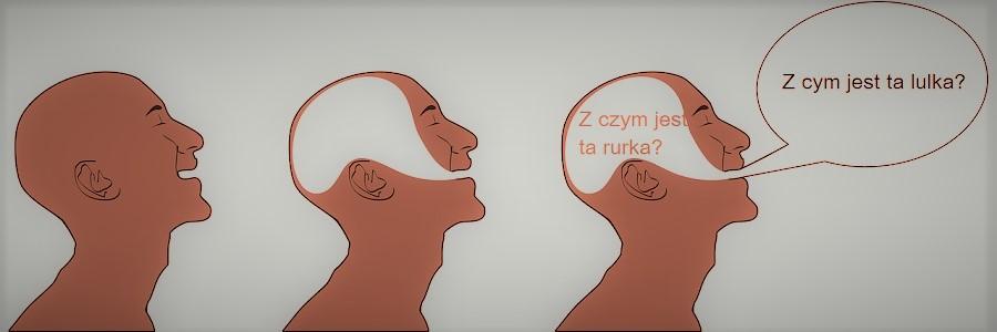 Logopedia. Zaburzenia mowy