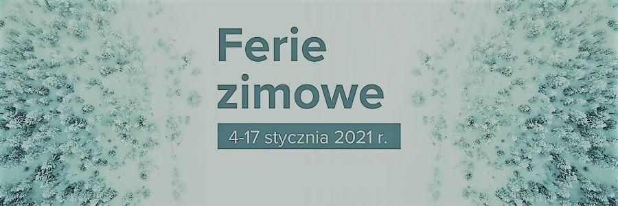 Ferie on-line zbiblioteką